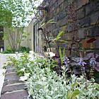 アンティーク煉瓦×植栽