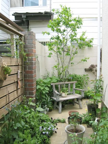ジューンベリーのあるテラスお庭