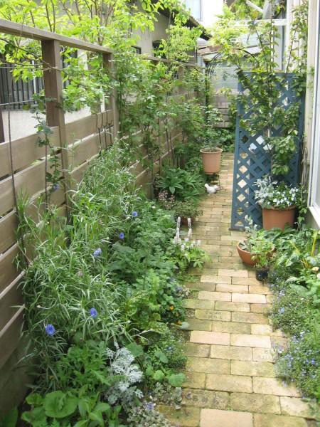 バラで埋め尽くされるウッドフェンスとレンガのアプローチの庭(ガーデン)