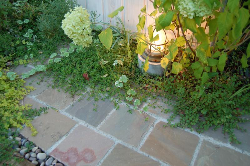 自然石・グランドカバー・マリンランプが可愛らしさを演出