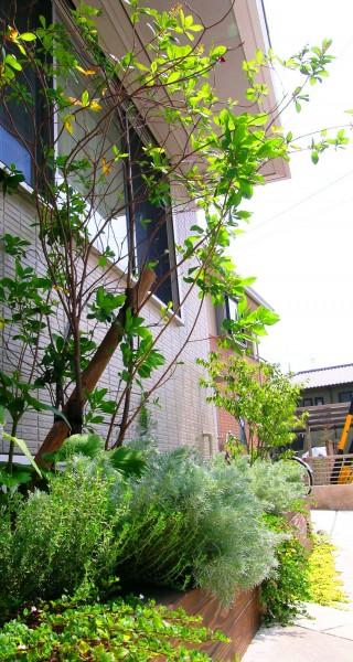 中木・下草によって可愛らしさを演出した花壇スペース