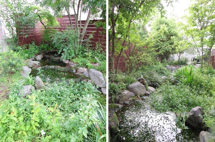 ビオトープのお庭(ガーデン)