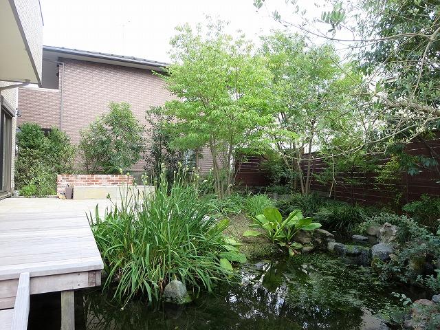 after ;「動植物」のための空間と「人」のための空間。対極の空間同士が互いを引き立てあう庭です