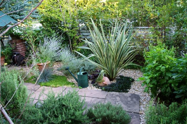 お庭 ガーデン ザ・シーズン港北 ナチュラルスタイル