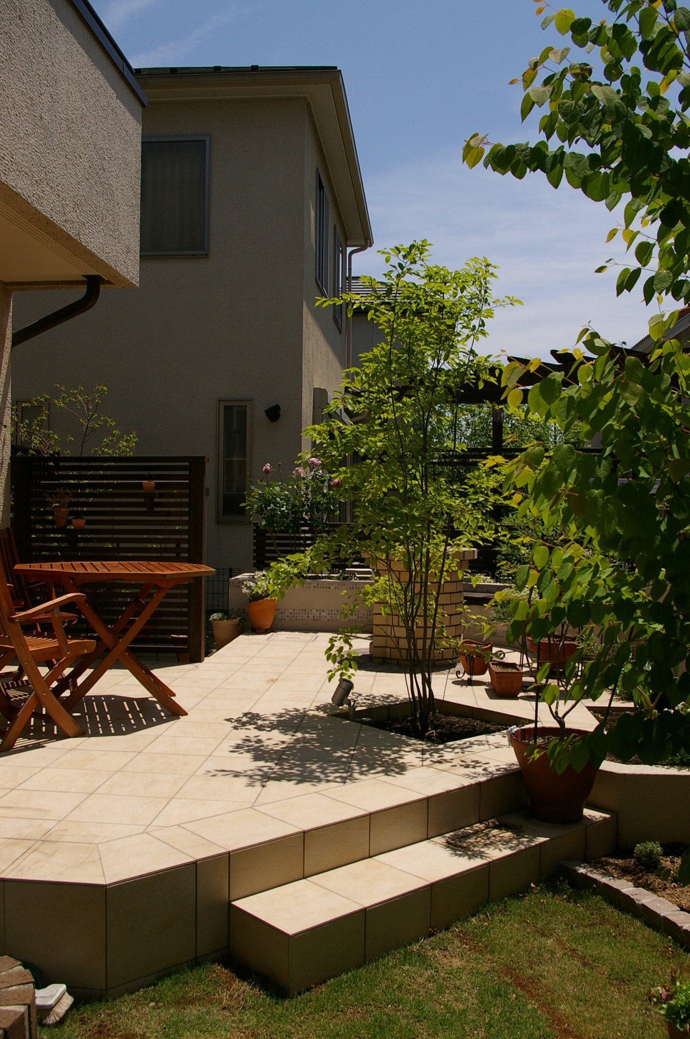 シンボルツリーがアオダモのお庭(ガーデン)