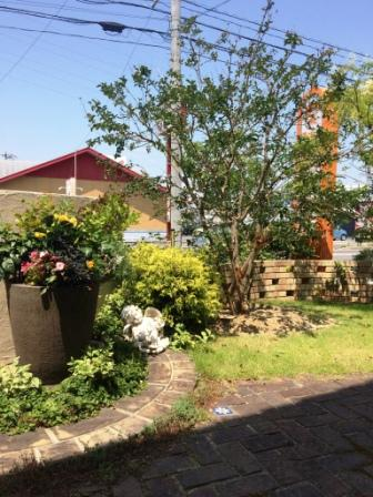 待合室からのお庭(ガーデン)の風景です。