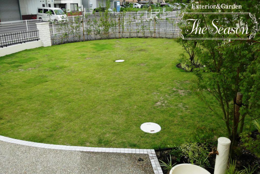 サークル状のシンプルな芝庭
