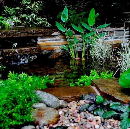 garden-biotope003