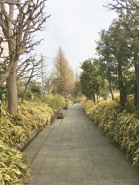 ガーデン、エクステリア、外構、庭、ザ・シーズン世田谷、シーズン世田谷