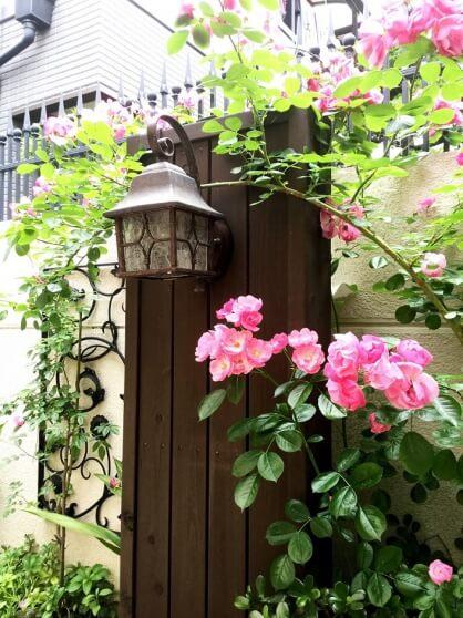 たくさんの愛情・薔薇のお庭W様邸