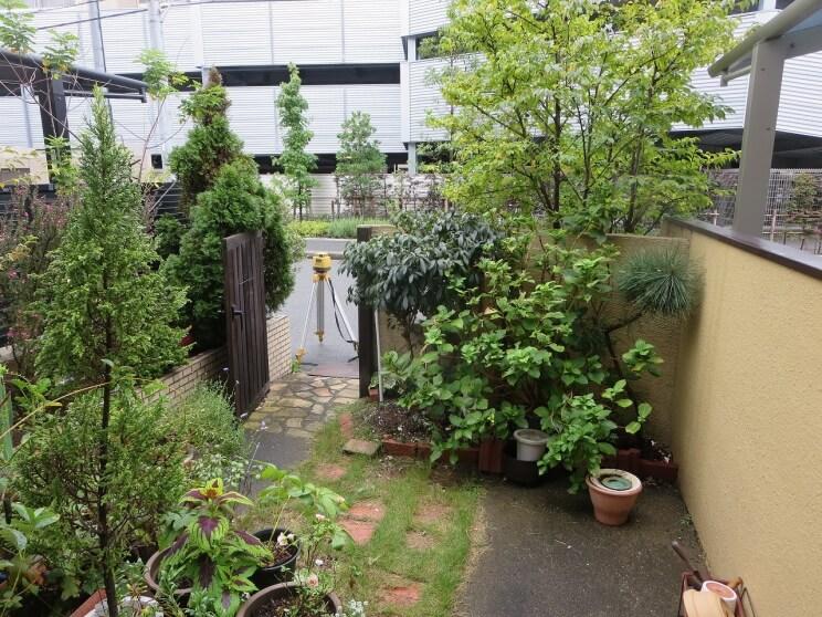 窓からの眺めを楽しむお庭