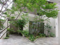 マンション・エントランスの植栽リフォームT様邸