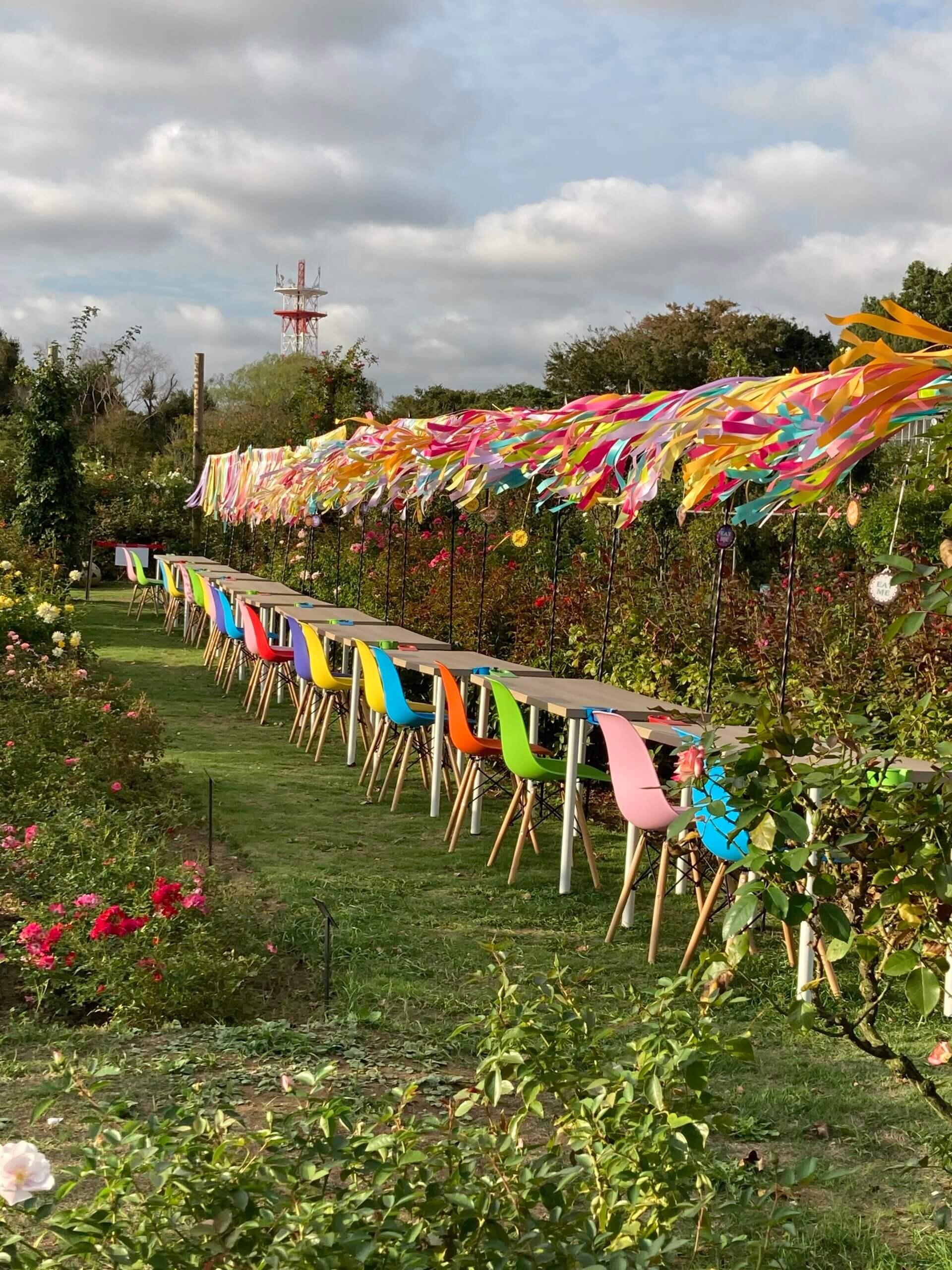 美しい植物たち「オータムローズの魅力~京成バラ園を訪ねて~」 <br>~松戸市、流山市、我孫子市でリフォーム工事をお考えのお客様へ~